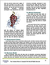 0000061443 Word Template - Page 4