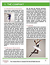 0000061456 Word Template - Page 3