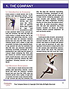 0000061457 Word Template - Page 3