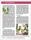 0000061461 Word Template - Page 3