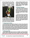 0000061461 Word Template - Page 4