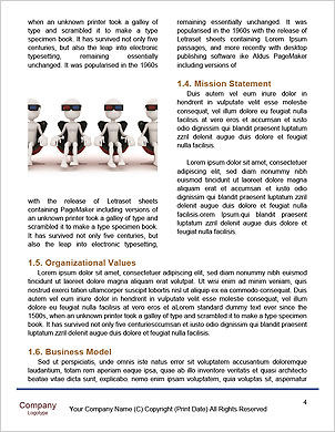 0000061463 Word Template - Page 4