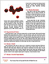 0000061464 Word Templates - Page 4