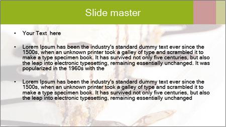 0000061465 PowerPoint Template - Slide 2