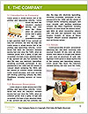 0000061465 Word Template - Page 3