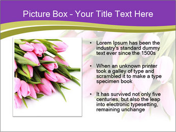 0000061468 PowerPoint Template - Slide 13