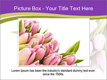0000061468 PowerPoint Template - Slide 15