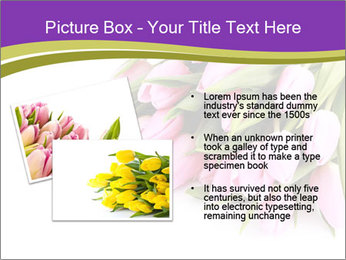 0000061468 PowerPoint Template - Slide 20
