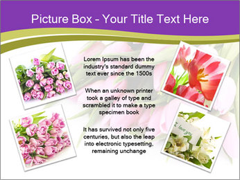0000061468 PowerPoint Template - Slide 24