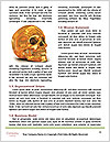 0000061473 Word Templates - Page 4