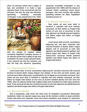 0000061482 Word Template - Page 4