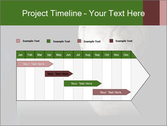 0000061486 PowerPoint Templates - Slide 25