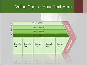 0000061486 PowerPoint Templates - Slide 27
