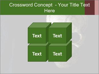 0000061486 PowerPoint Templates - Slide 39