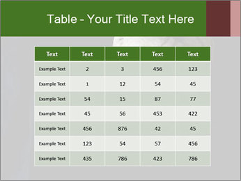 0000061486 PowerPoint Templates - Slide 55