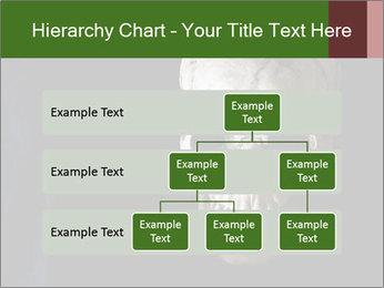 0000061486 PowerPoint Templates - Slide 67