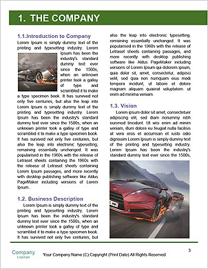 0000061491 Word Template - Page 3