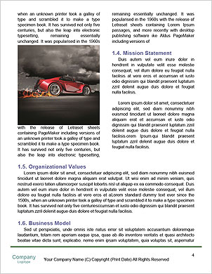 0000061491 Word Template - Page 4