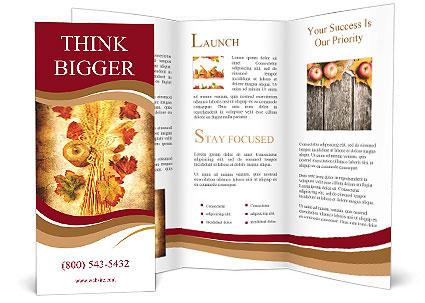0000061497 Brochure Template