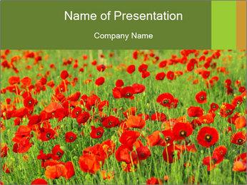 0000061498 PowerPoint Template - Slide 1