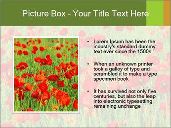 0000061498 PowerPoint Template - Slide 13