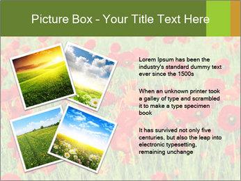 0000061498 PowerPoint Template - Slide 23