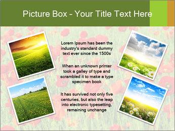 0000061498 PowerPoint Template - Slide 24