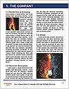 0000061501 Word Template - Page 3