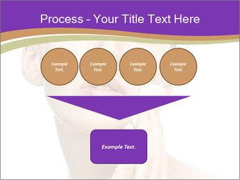 0000061507 PowerPoint Template - Slide 93