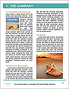 0000061510 Word Templates - Page 3