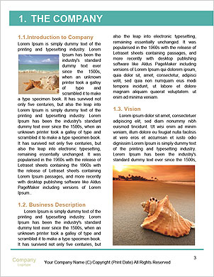 0000061510 Word Template - Page 3