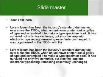 0000061520 PowerPoint Templates - Slide 2