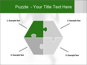 0000061520 PowerPoint Templates - Slide 40