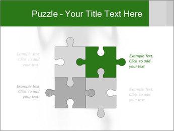 0000061520 PowerPoint Templates - Slide 43