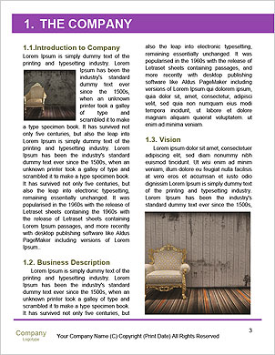 0000061523 Word Template - Page 3