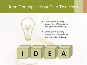 0000061526 PowerPoint Template - Slide 80