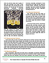 0000061531 Word Templates - Page 4