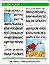 0000061532 Word Templates - Page 3