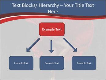 0000061535 PowerPoint Templates - Slide 69