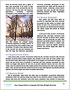 0000061536 Word Template - Page 4
