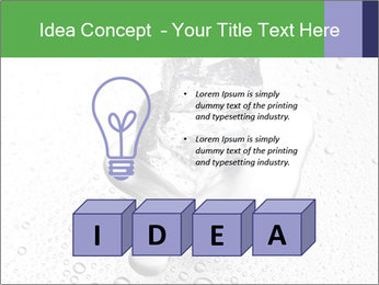 0000061538 PowerPoint Templates - Slide 80