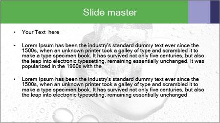 0000061538 PowerPoint Template - Slide 2