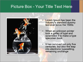 0000061558 PowerPoint Templates - Slide 13