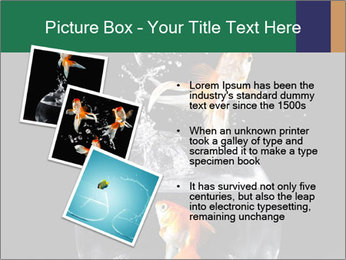 0000061558 PowerPoint Templates - Slide 17