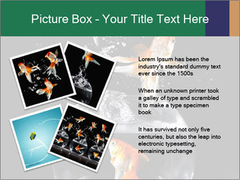 0000061558 PowerPoint Templates - Slide 23