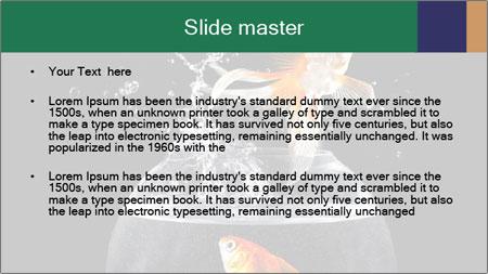 0000061558 PowerPoint Template - Slide 2