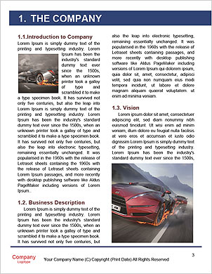 0000061560 Word Template - Page 3