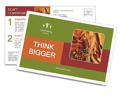 0000061566 Postcard Templates