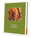 0000061566 Presentation Folder