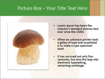 0000061568 PowerPoint Template - Slide 13